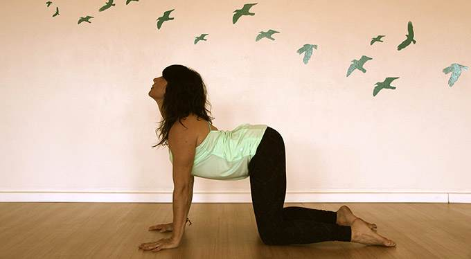 The Scientific Benefits of Yoga Therapy: 6 Reasons To Start Practicing Yoga