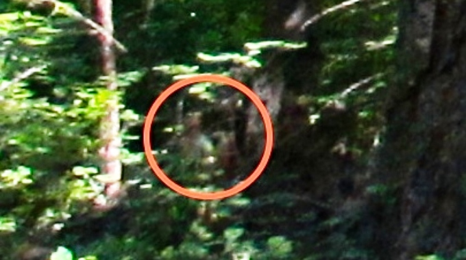 This is the the above photo zoomed in on the humanoid figure