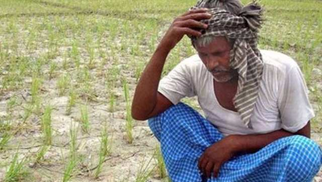 india farmer heat wave