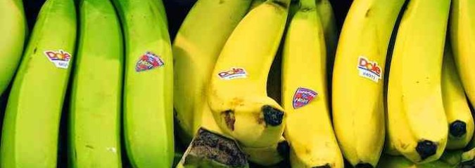 """Big Agri's Latest GMO Gruel: """"Super Bananas for Brown People"""""""