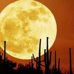 Full Moon Looms Large Over Your Sleep