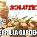 Food Solutions: Guerrilla Gardening
