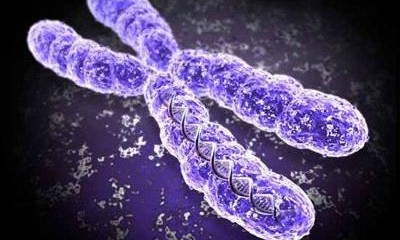 Scientific Oddity or Medical Miracle? Shattered Chromosome Cures Woman Of Immune Disease