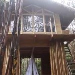 Woman Builds Beautiful Hawaiian Vacation Home for Only $11,000 (video)