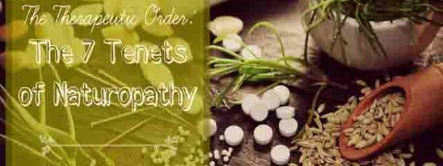 How To Heal Naturally: Know These 7 Tenets of Naturopathy