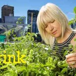 New Study Reveals the Many Benefits of Urban Rooftop Gardens