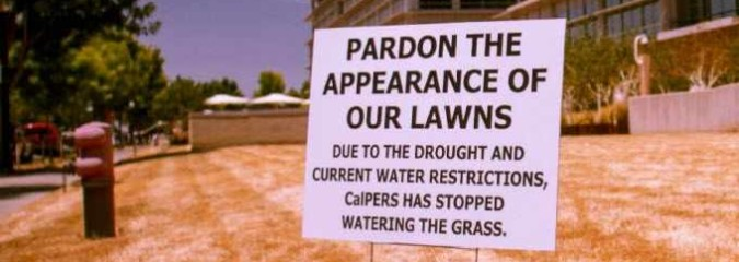 Era of 'Nice Little Green Grass' Is Over as California Imposes Strict Water Rules