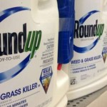 Are Monsanto's Chemicals In Your Blood? Test Yourself and Find Out