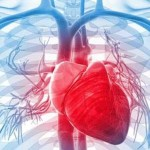 Chelation Therapy & Other Ways to Detox From Heavy Metals: 5 Big Benefits