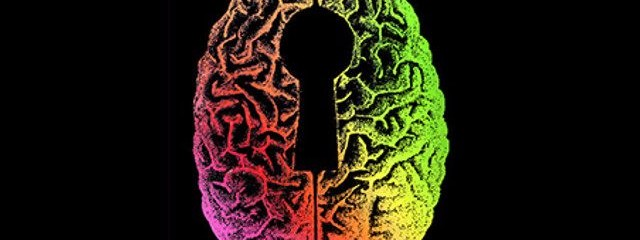 5 Powerful Psychedelics That Reorganize the Brain and Elevate Consciousness