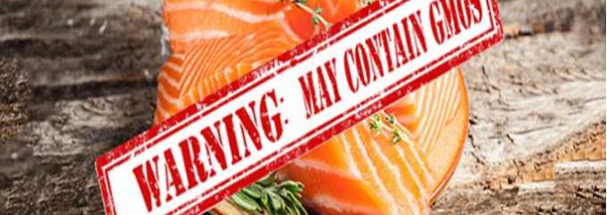 This Is Huge: Spending Bill Forces FDA to Label the New GM Salmon