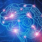 Company Claims That Brain Transplants Could Bring Back the Dead by 2045