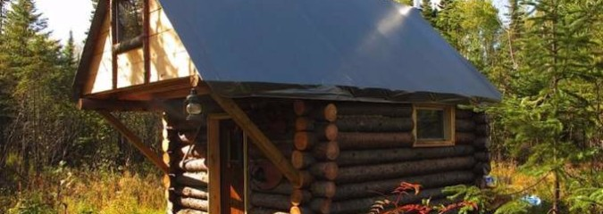 """How To Build a $500 Cabin Without a Permit: """"Simple Offers Freedom"""""""