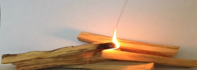 Palo Santo – Could It Be An Alternative To Using Sage?