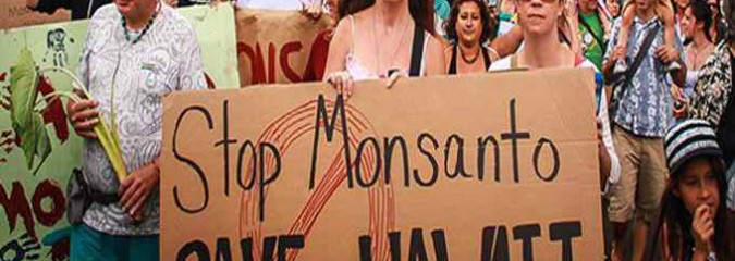Hawaii Citizens Beat Monsanto, Bypass 'Right to Spray' Pesticides Bill