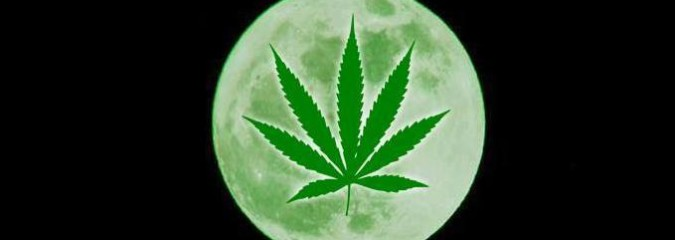 This Viral Green 4/20 Moon Meme Is Everything That's Wrong with the Internet
