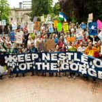 This Eco-Conscious County Said 'No' to Nestle and Won in a 'Landslide Victory'