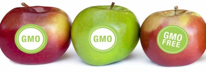 Monsanto's Trojan Horse Bill Threatens GMO Labeling For Good