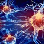 Human Cells Found to Have Electric Fields as Powerful as Lighting Bolts