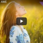 The Age Of Awe (Video with Jason Silva)