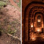 It Looks Like A Rabbit Hole, But What The Tunnel Leads To Blew My Mind…