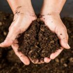 Simple Steps To Make Compost At Home