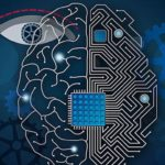 Companies Race To Perfect The Computer Brain Interface