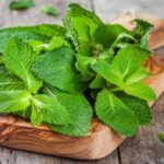 Mint And Mental Aptitude: 4 Ways Scent Naturally Supports Brain Cognition