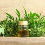 Using CBD To Manage Short and Long-Term Side Effects of High-THC Cannabis